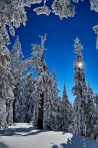 Winter Wonderland, Crater Lake - Daniel Loch